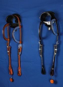 Double-ear show headstall
